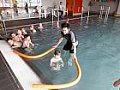 Plavecký výcvik 9.3.2020
