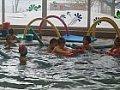 Plavecký výcvik 4.1.2016
