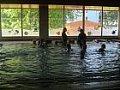 Plavecký výcvik 29.5.2017